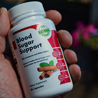 Blood Sugar Support Bottle in Hand