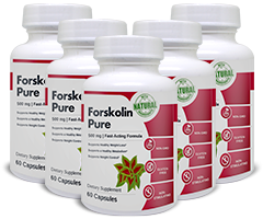 Each bottle contains 60 veggie capusles of Forskolin Pure