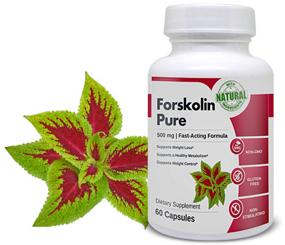 Forskolin supplement helps to support weight loss