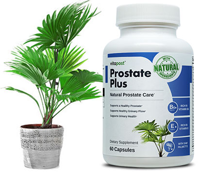 Bottle of Prostate Plus with Saw Palmetto plant