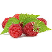 Image of Raspberry Ketone Fruit