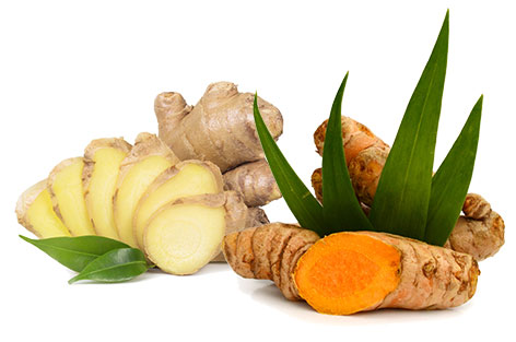Turmeric Leaves and Ginger Roots